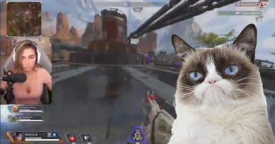 Apex Legends cat